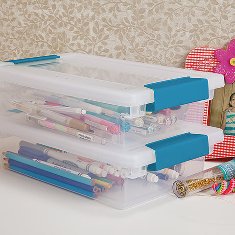 Sterilite Small Clip Storage Box