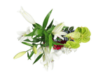 Load image into Gallery viewer, Oriental lilies & green anthuriums arrangement
