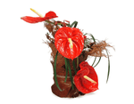 Load image into Gallery viewer, red anthuriums and red roses