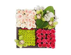 green daisies and roses for delivery