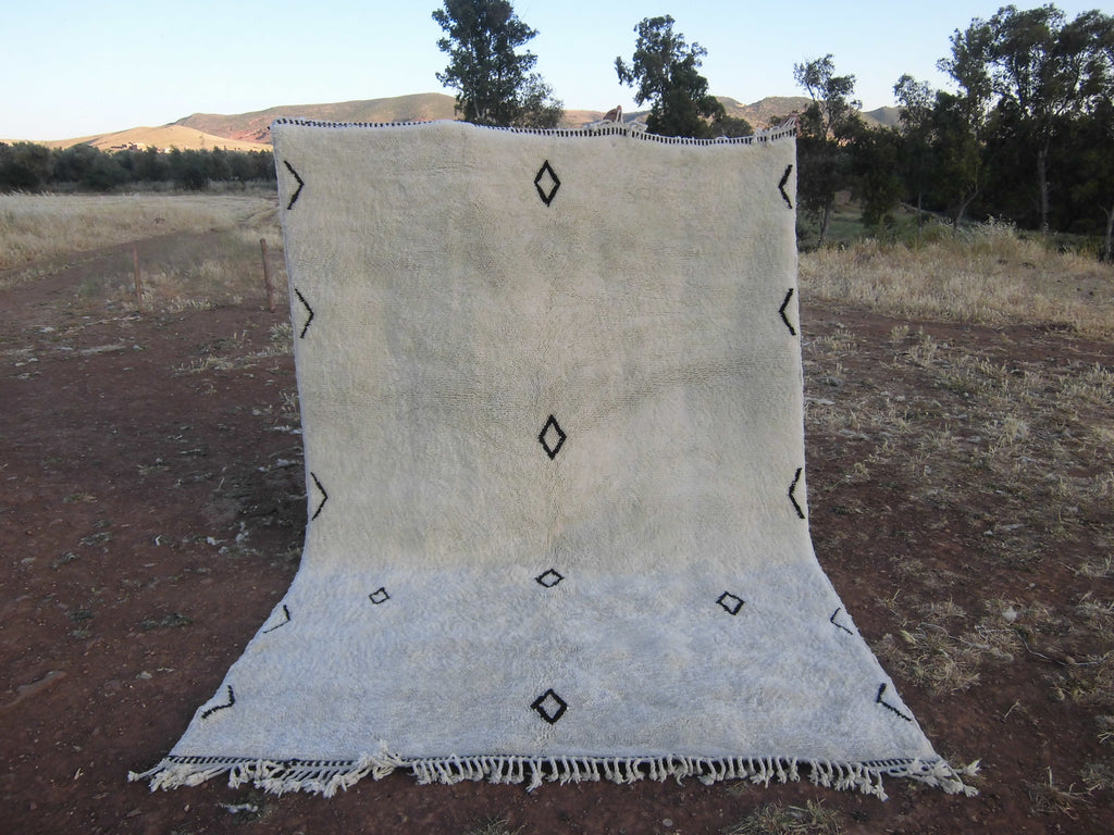 Elegant Middle Atlas Rug - MA14