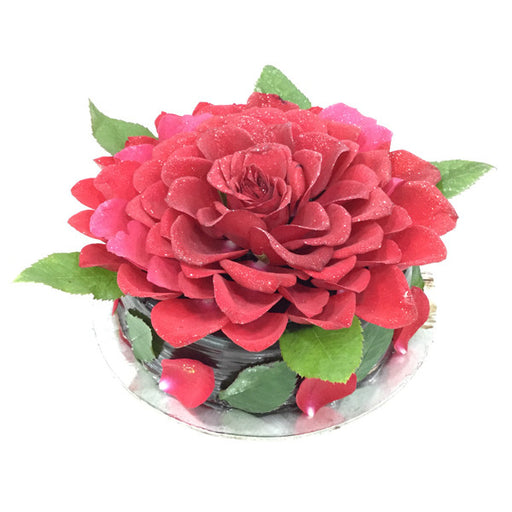 Choco Rose Cake - Cake Home Delivery