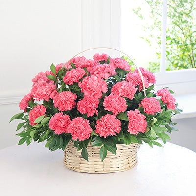 Pink shades flowers cake links online delivery order now pink shade prettiest pink flowers mightylinksfo