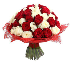A beautiful set of red and white  flowers which is available. order now