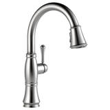 Delta Cassidy Single Handle Pull-Down Kitchen Faucet 9197-AR-DST Arctic Stainless