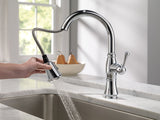 Delta Cassidy Single Handle Pull-Down Kitchen Faucet - 9197