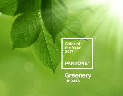 Let's take a look at Pantones colour of 2017 - Greenery.