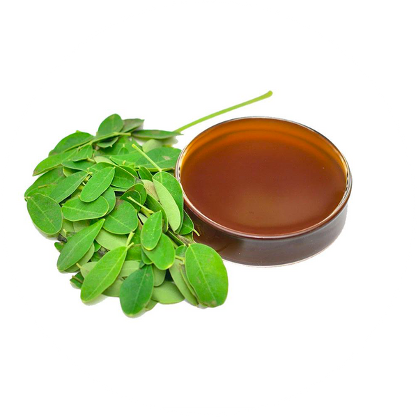 Moringa Liquid Plasma Extract - The Miracle Tree