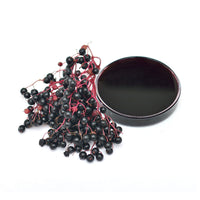 Elderberry Liquid Plasma Extract