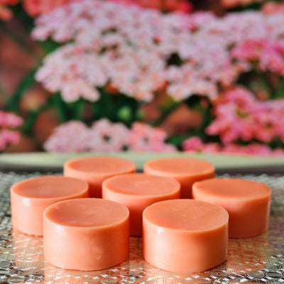 15 pcs Magnesium MCPs Solid Body Lotion Orange Cinnamon Scent Custom Made on request