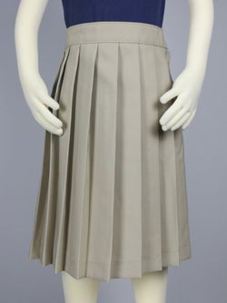 Pleated Basic Skirt