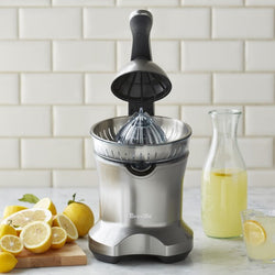 Breville Citrus Press Juicer in Silver