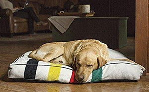 Glacier National Park Dog Bed