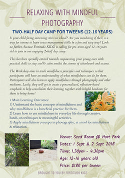 Relaxing with Mindful Photography (2 half-day camp for Tweens 12-15 years)