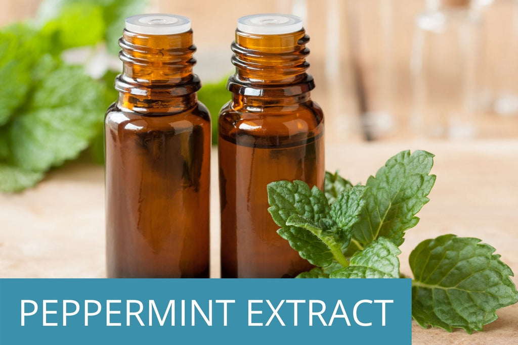 two bottles of peppermint extract with fresh peppermint on the side - peppermint extract is a key ingredient for optimal hair and skin health