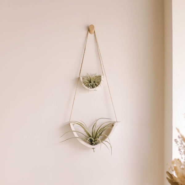 Air Plant Cradle - Large