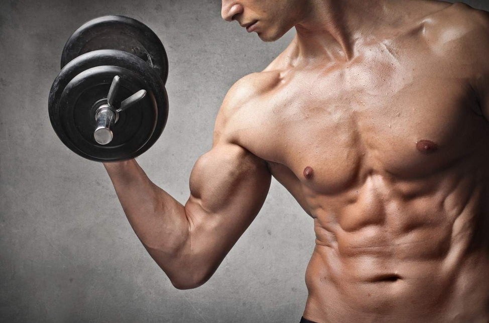 5 Powerful Muscle Building Tips for Hardgainers