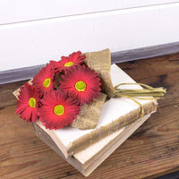 Honey and Me - Red Gerber Daisy Bundle in Paper