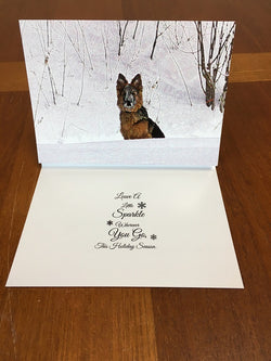 Leave a Little Sparkle Holiday Cards
