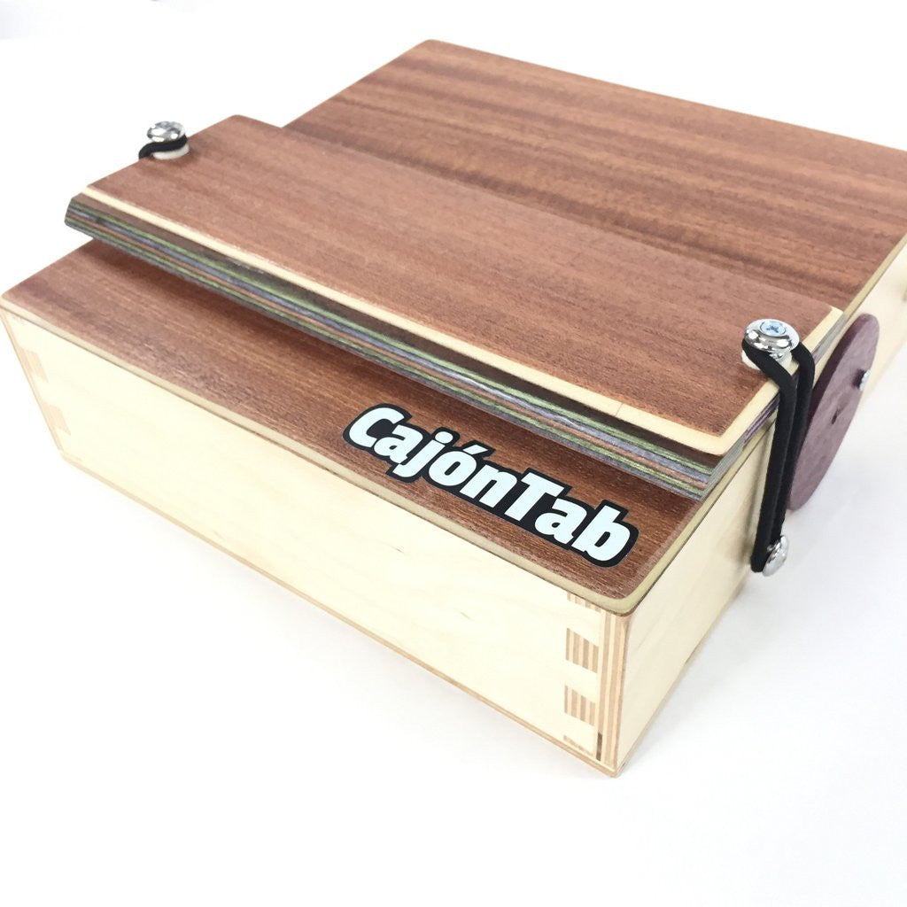 CajonTab with Snare: Introducing an external floating snare mechanism for cajon.