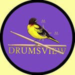 Drummers View Logo