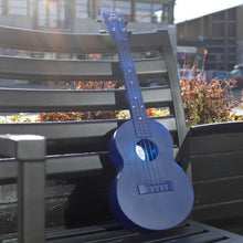 OUTDOOR UKULELE™ TENOR BLUE NICKEL