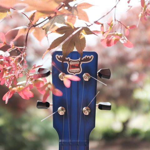 Image of OUTDOOR UKULELE™ TENOR BLUE NICKEL