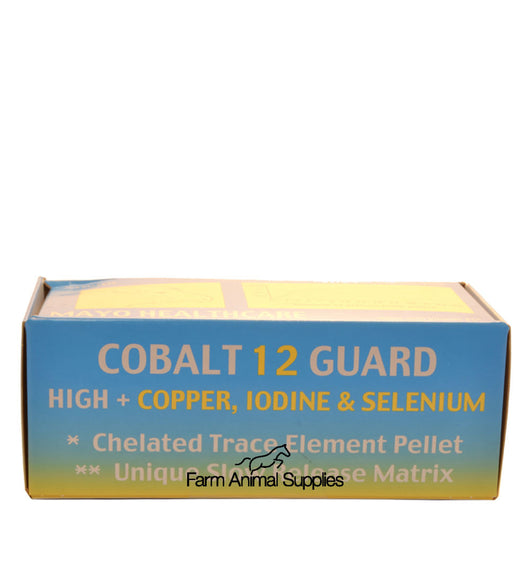 Mayo Healthcare - Cobalt 12 Guard Sheep with Copper