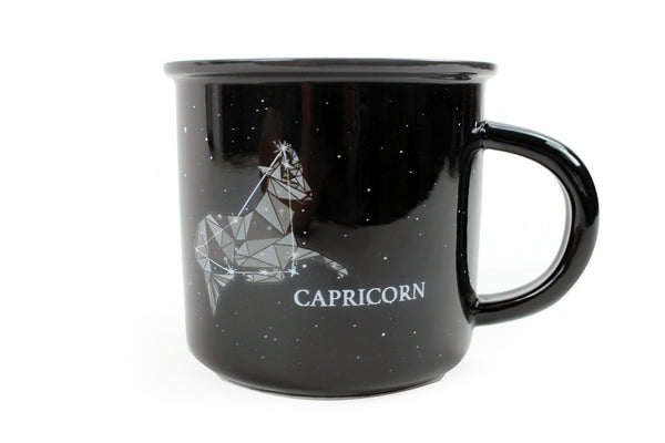 Capricorn (Dec 22 - Jan 19)