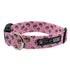 Valentine Bee Dog Collar