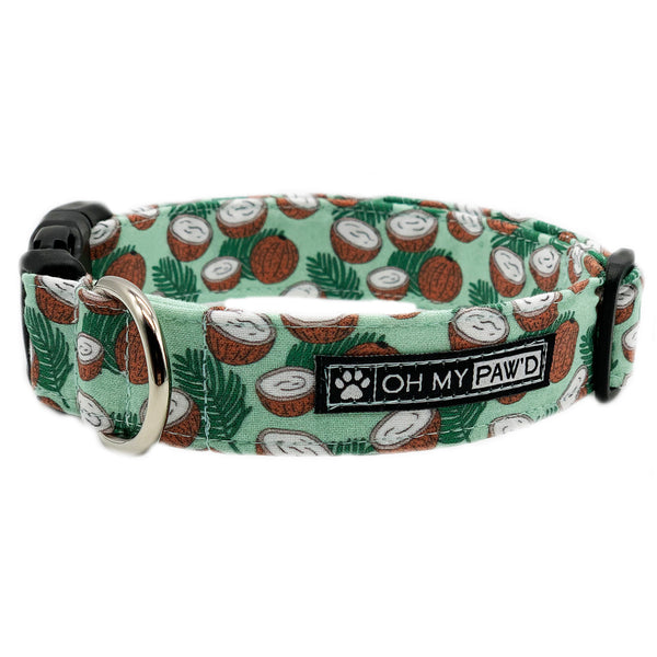 Coconut Dog Collar