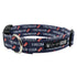 Firecracker Dog Collar