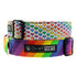 products/ohmypawd-gay-pride-collection.jpg