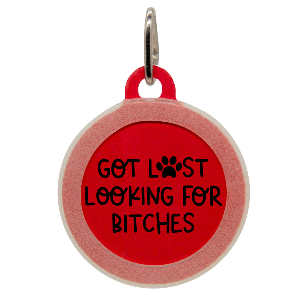 Got Lost Looking For Bitches Dog ID Tag