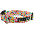 Jelly Bean Dog Collar