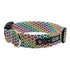 Rainbow Heart Dog Collar
