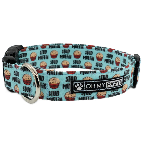 Stud Muffin Dog Collar
