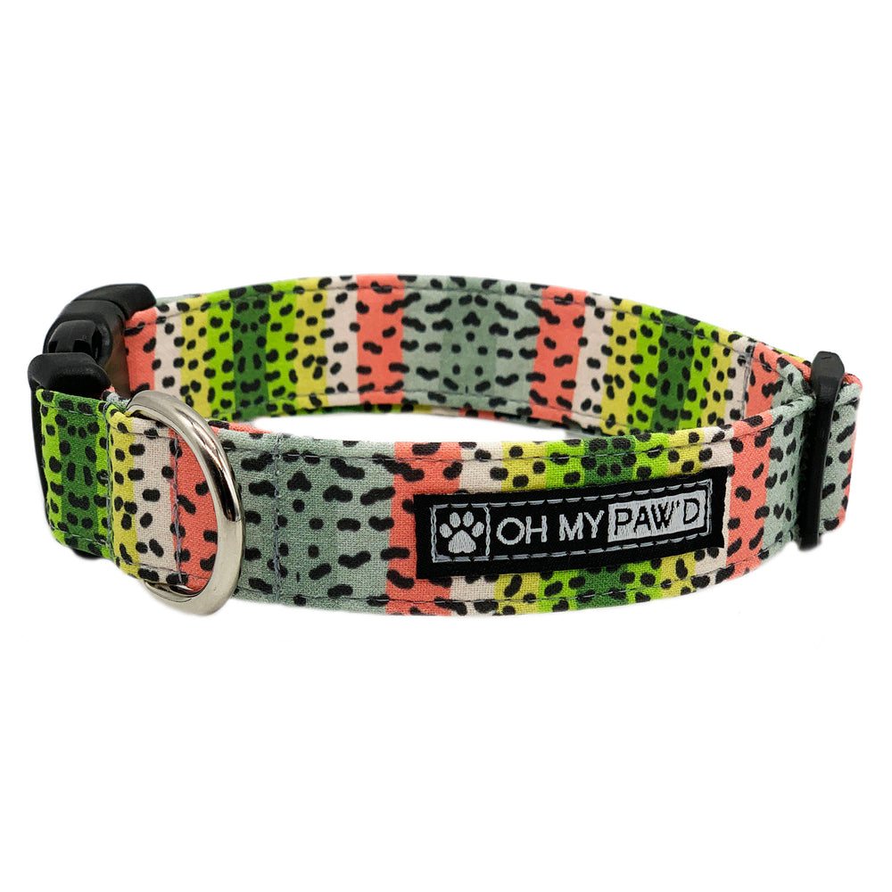 Rainbow Trout Dog Collar