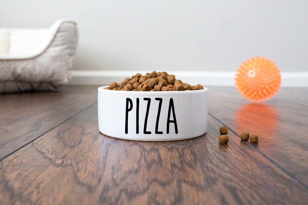 Pizza & Beer Dog Bowls Set