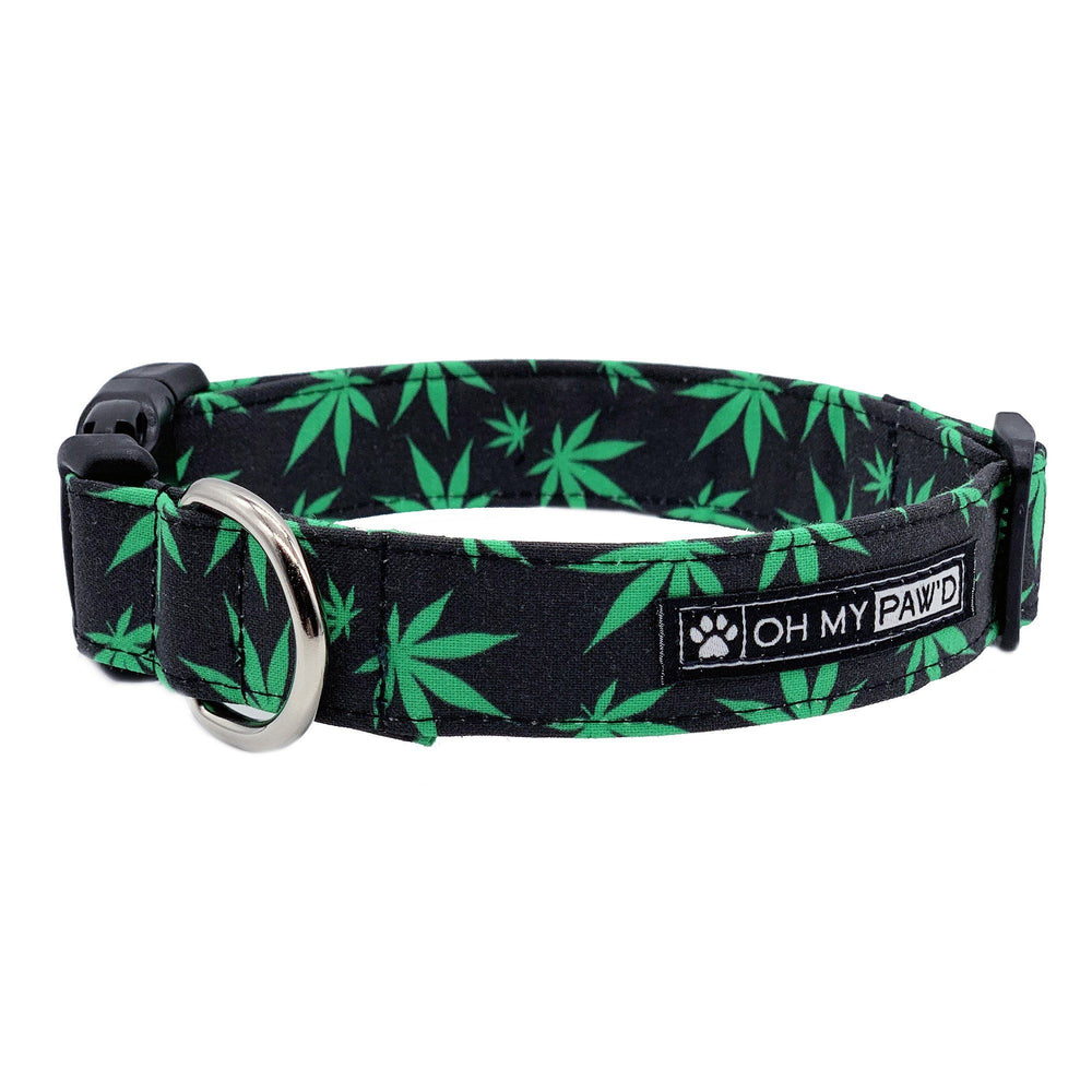 Pot Leaf Dog Collar