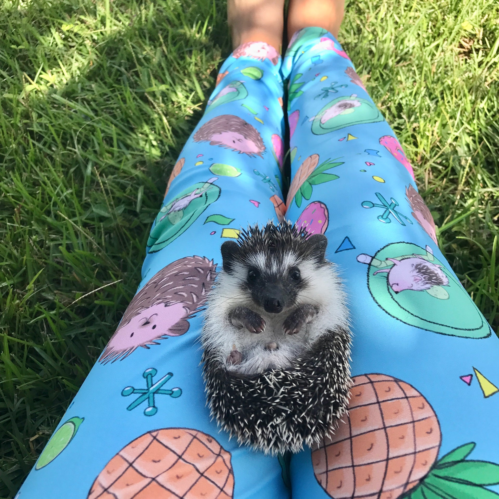 Hedgies, Hooray! Leggings