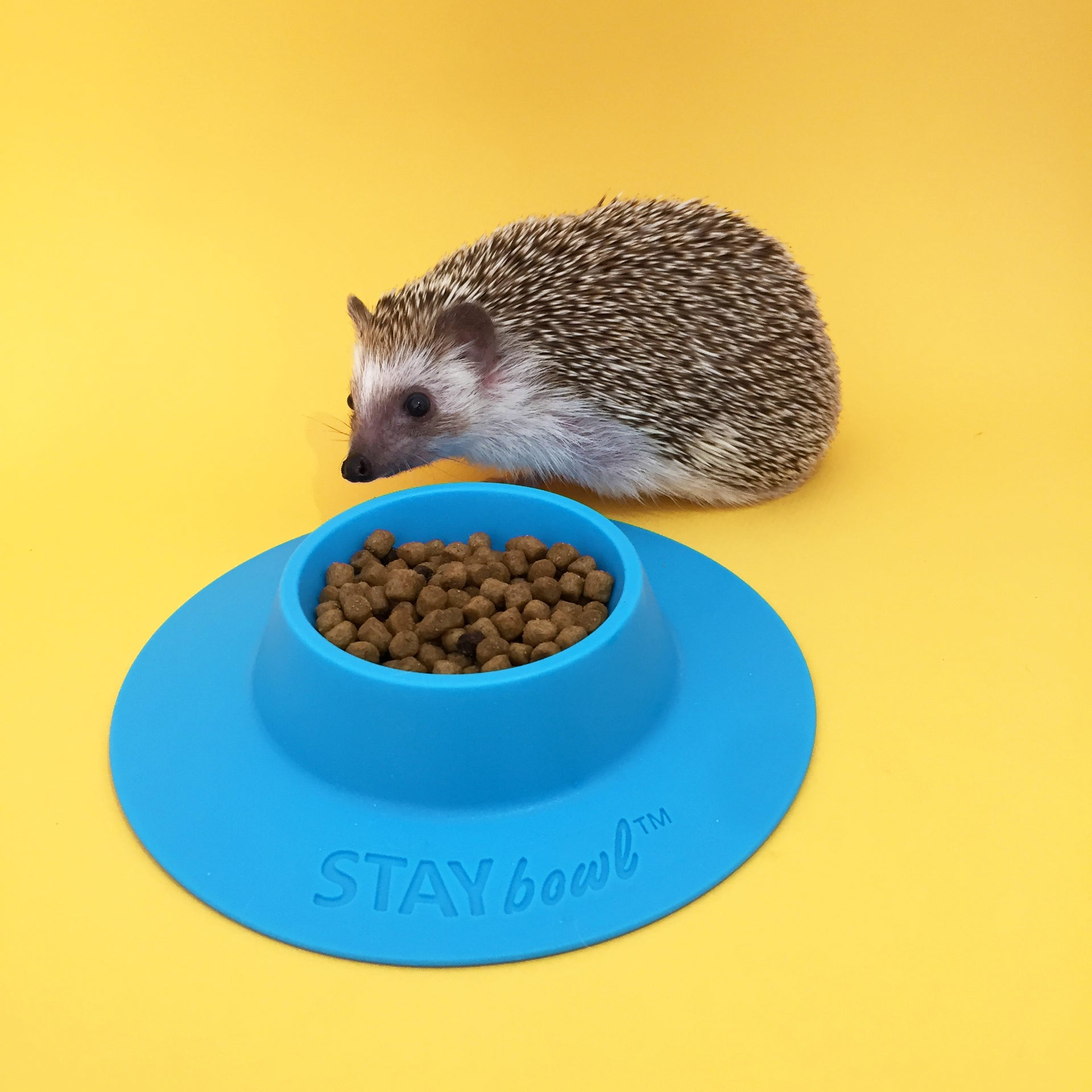 STAYbowl® Tip-proof Food Bowl