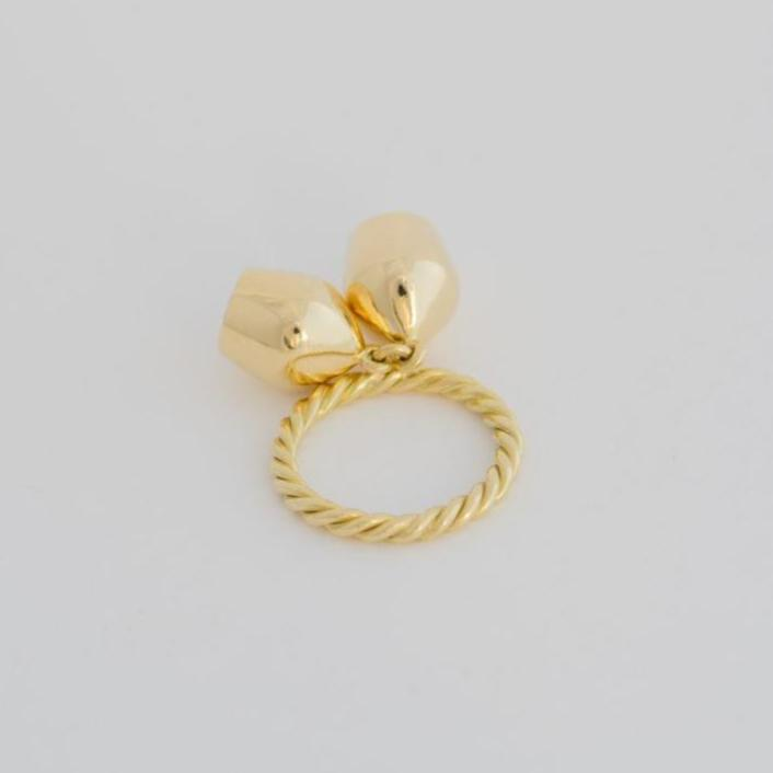 Gold Ring & Plain Charms