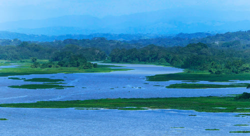 The Gamboa Waterway and Jungles - Gamboa Rain Forest Panama