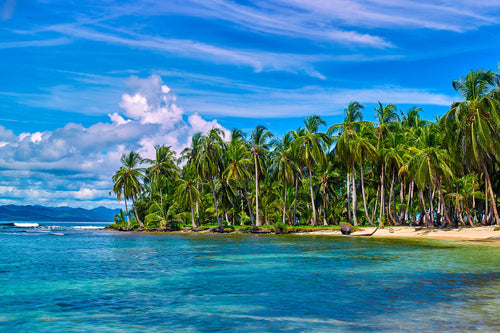 Tropical Island, Near Yandup San Blas - Panama