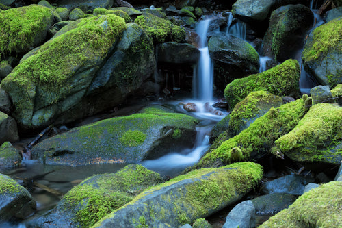 Mossy Falls - Olympic Park, Washington State