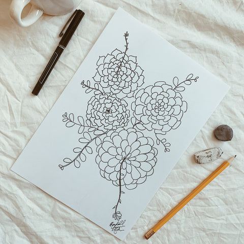 Succulent Drawing 101 - At Home Workshop