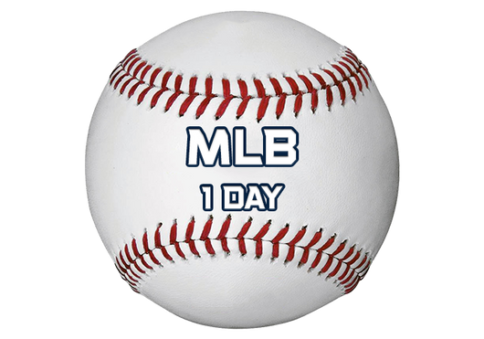 MLB - One Day Package