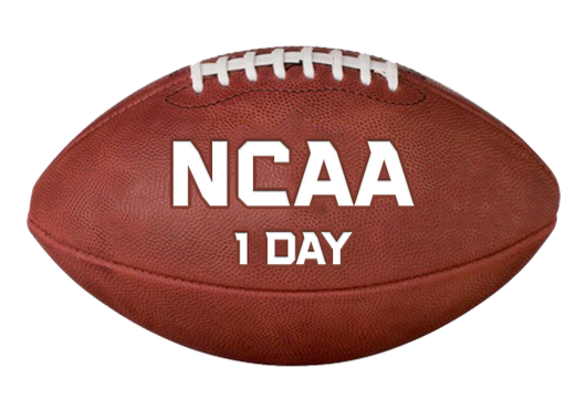 NCAA Football - One Day Package