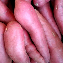 IFH Sweet potatoes - orange, 3 lbs